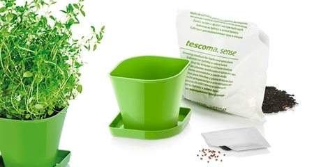 Набор для выращивания пряных растений Tescoma SENSE, тимьян