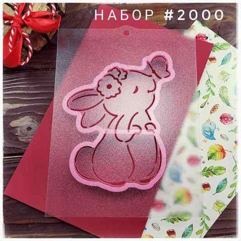 Набор №2000 - Зайка с бабочкой