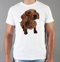 Футболка с принтом собаки (Собачки, Такса) белая 0049