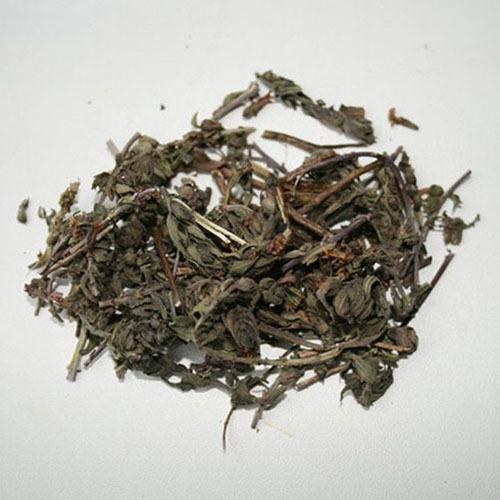 Травы Зубчатка odontites-263.jpg