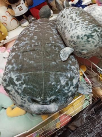 Тюлень с детенышем 30 и 20 см