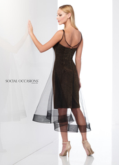 Social Occasions 218802