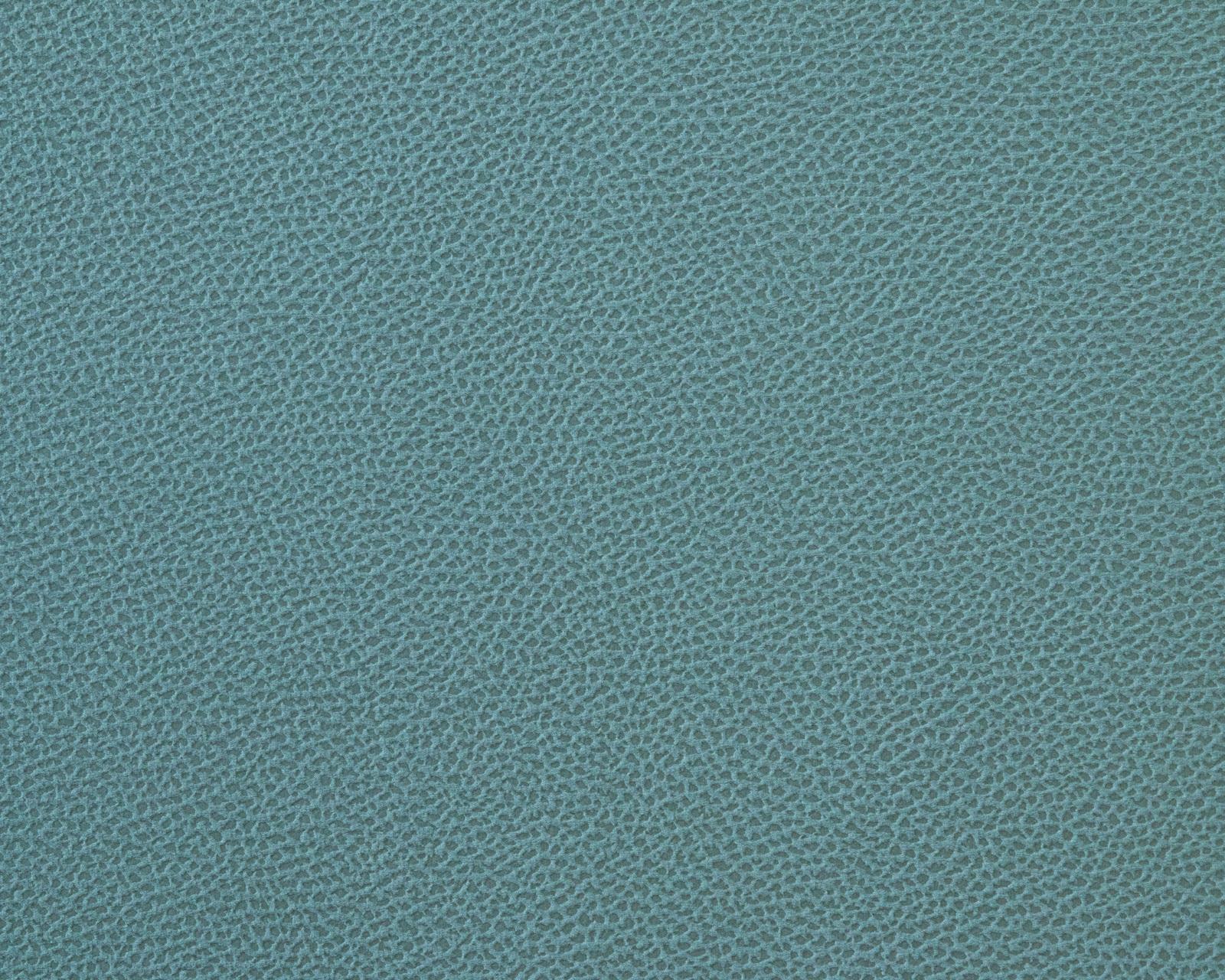 Tudor Mint (LE) велюр