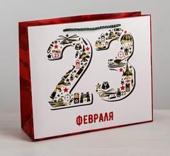 Пакет ламинированный горизонтальный «23 февраля», MS 23 × 18 × 8 см