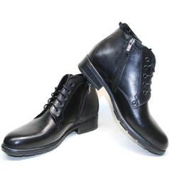 Стильные зимние ботинки мужские Ikoc 2678-1 S