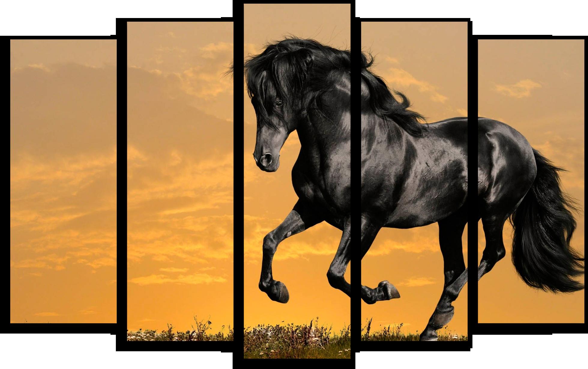"""Животные Модульная картина """"Черная лошадь"""" М486.png"""
