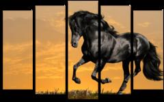 """Модульная картина """"Черная лошадь"""""""