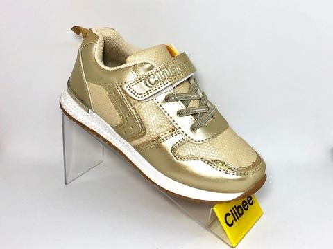 Clibee P296 Gold 32-37