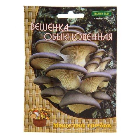 Мицелий грибов Вешенка обыкновенная на деревянных палочках 12 шт