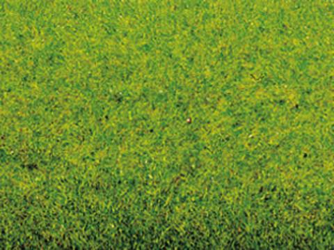 Травяное покрытие