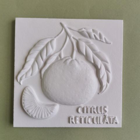Плитка Каф'декоръ 10*10см., арт.3217