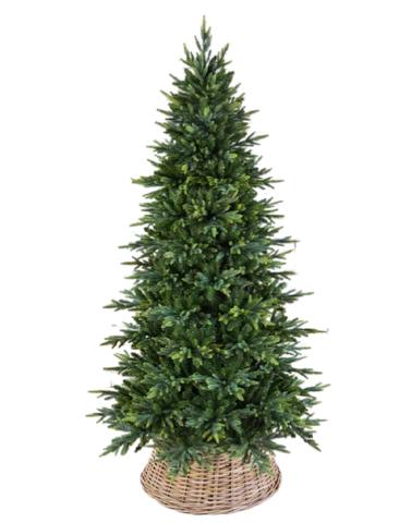 Triumph tree ель Королевская стройная 2,15 м зеленая