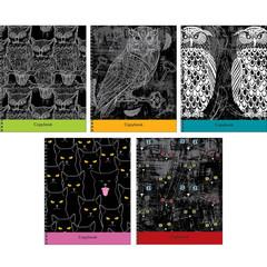 Тетради А5 96л. Гребень. Клетка-Коты и совы (графика)