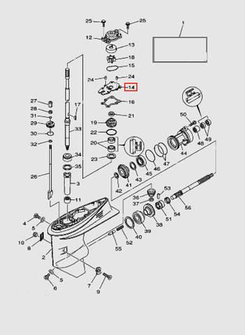 Зеркало помпы для лодочного мотора T40 Sea-PRO (23-14)