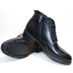 Мужские зимние ботинки на меху Ikoc 2678-1 S