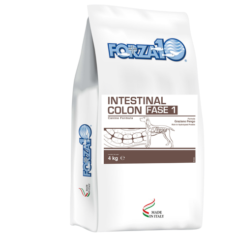 Forza10 INTESTINAL COLON ФАЗА 1
