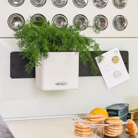 13398 Комплект Green Wall Home Kit Color Белый с системой автополива