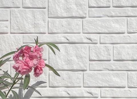 Сайдинг Tecos Натуральный камень пример отделки Белый цвет