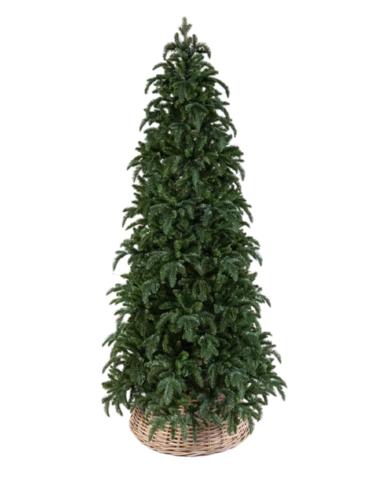 Triumph Tree ель Нормандия стройная 3.05 м