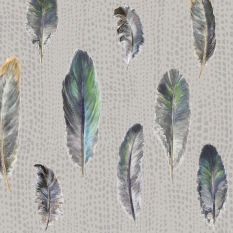 Перья на сером фоне