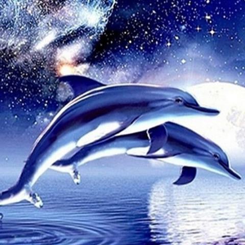 Алмазная Мозаика 20x30 Прыжок дельфинов на закате