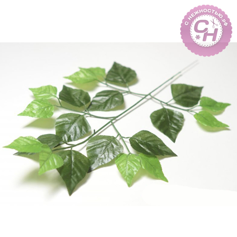 Береза, листья на ветке, 1 шт.