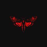 Lil Wayne / I Am Not A Human Being II (RU)(CD)