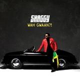 Shaggy / Wah Gwaan?! (2LP)