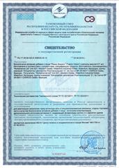 Свидетельство о регистрации Ламин Вижион
