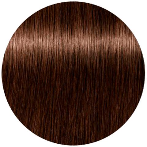 Schwarzkopf Igora Absolutes New 6-60 (Темный русый шоколадный натуральный) - Стойкая крем-краска для окрашивания зрелых волос