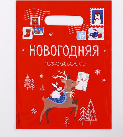 Пакет подарочный «Почта»