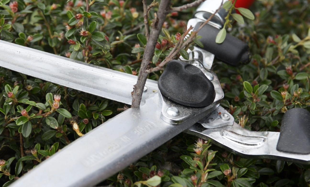 Ножницы для живой изгороди BERGER 4490