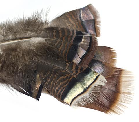 WAPSI Радужные хвостовые перья индюка Ozark Iridescent Turkey Tail Natural (6 шт.)