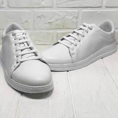 Женские сникерсы кроссовки белые Evromoda 141-1511 White Leather.