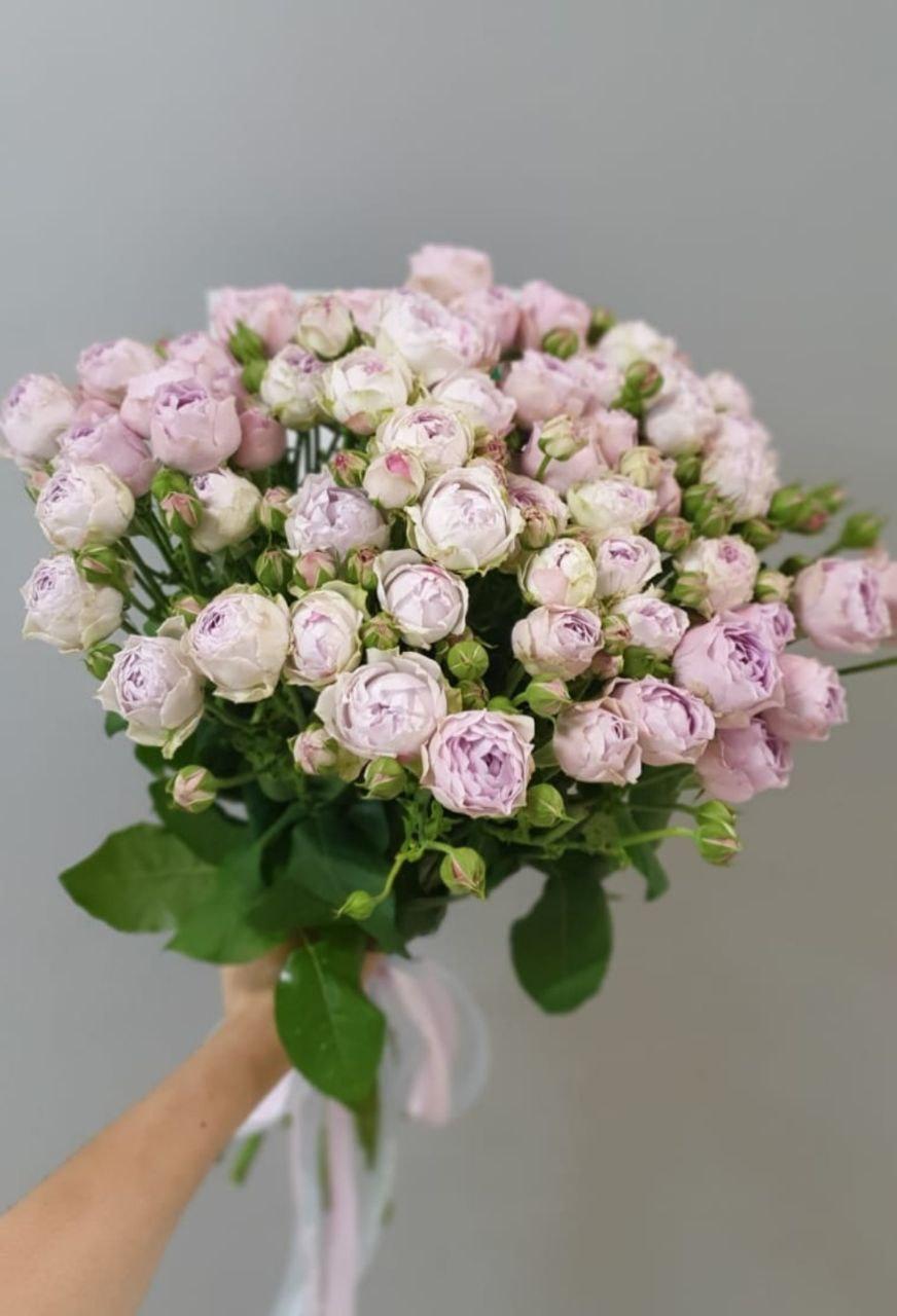 Букет кустовая Роза (Б-97)