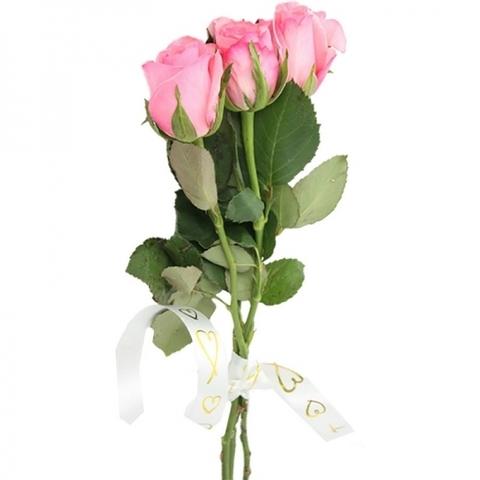 3 розовые розы #3577
