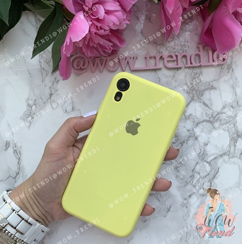 Чехол iPhone XR Silicone Slim Case /flash/