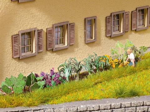 Растения для сада (17 шт)