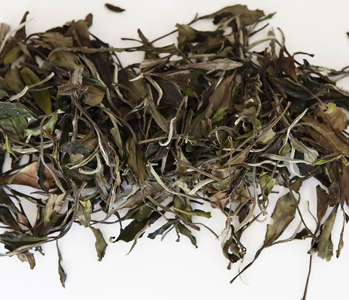 TEA-CH125 Китайский белый чай «Белый Пион» (Бай Му Дань, 50 гр) фото 02
