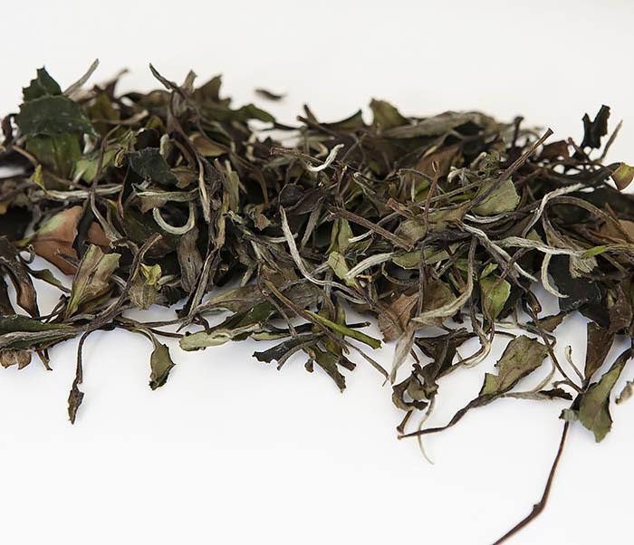 TEA-CH125 Китайский белый чай «Белый Пион» (Бай Му Дань, 50 гр) фото 03