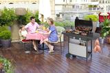 Газовый гриль Campingaz 2 Series Classic LX BBQ