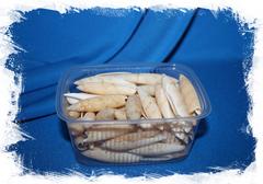 Ракушки для поделок и декора в упаковке