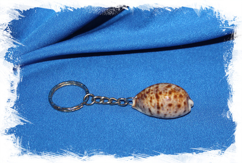 Брелок в морском стиле с ракушкой Ципрея Рысь