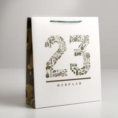 Пакет ламинированный вертикальный «23 февраля», M 26 × 30 × 9 см, 1 шт.