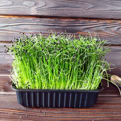 Шнитт-лук на корне (лоток) / 30 гр