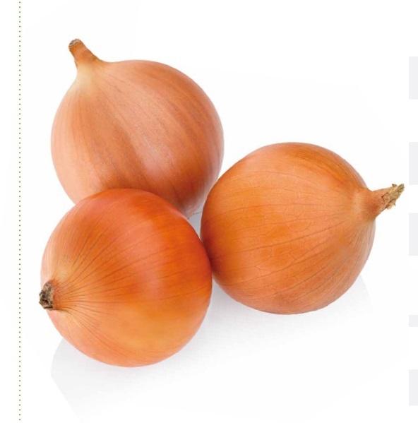 Репчатый Миссисипи F1 семена лука репчатого (Seminis / Семинис) миссисипи.jpg