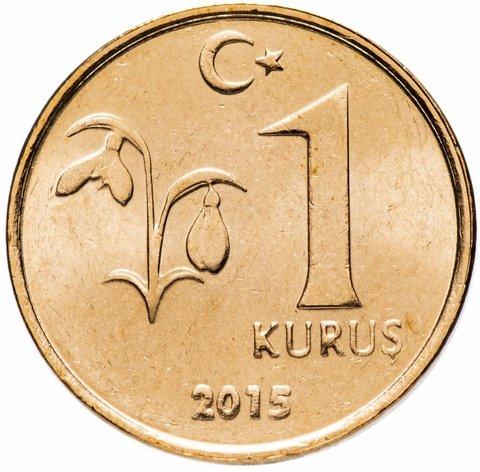 1 куруш. Турция. 2015 год. UNC