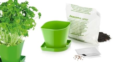 Набор для выращивания пряных растений Tescoma SENSE, петрушка
