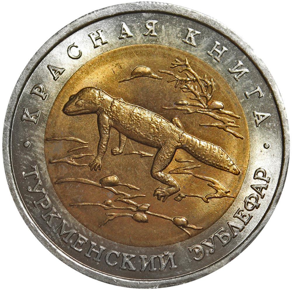 "50 рублей ""Туркменский эублефар"" 1993 год №1"