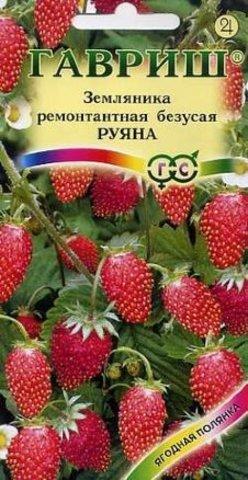 Земляника Руяна ремонтантная безусая 0.03г